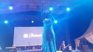 Video Asiknya Dangdut versi BALASYIK Jember 08123529290 featuring Angel live in Rantau Kalsel. season 2 download MP3, 3GP, MP4, WEBM, AVI, FLV Mei 2018