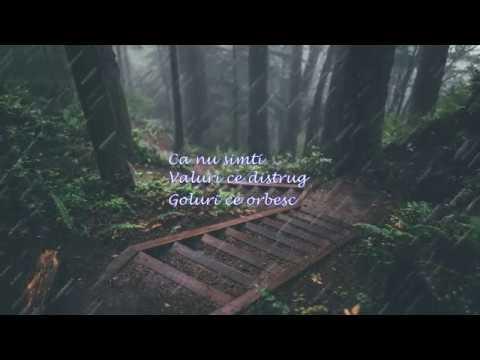 Carla's Dreams - Pe Umerii Tai Slabi ( Cover by Haralambi Lefter Gabriel)