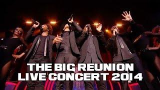 DAMAGE - LOVE II LOVE (THE BIG REUNION LIVE CONCERT 2014)
