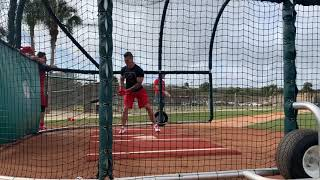 Tyler O'Neill and Lane Thomas in the batting cages