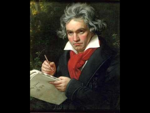 Beethoven - String Quartet op. 130 - Cavatina