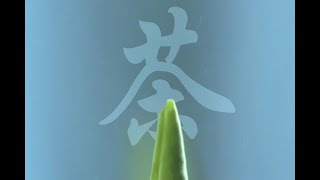 [한자로 알아보는 중국문화] 차(茶) 문화: 차의 종류…