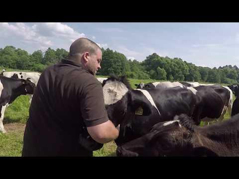 """Швейцарцы в русской деревне - """"Швейцарское молоко""""   Schweizer Bauern In Russland -""""Schweizer Milch"""""""