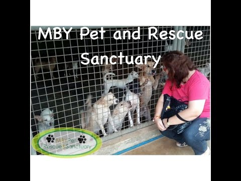 MBY Pet Rescue and Sanctuary