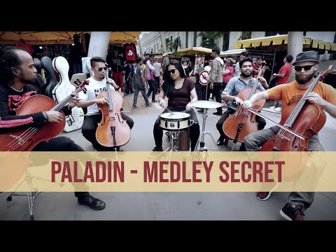 Paladin Official Music Video - Rock Fusion Cello Band