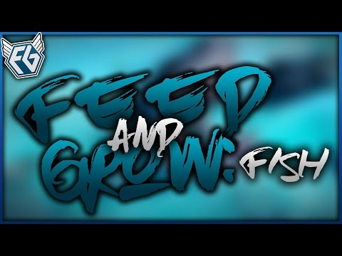 Český GamePlay | Feed and Grow: Fish | Podvodní Ghetto | 1080p 60FPS
