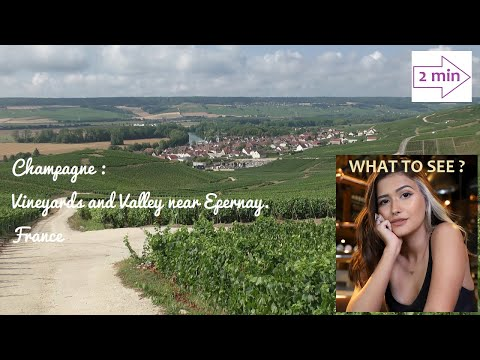 WHAT TO SEE IN Champagne near Epernay, France. Vineyards and Marne Valley.