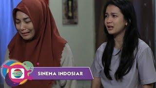Download Video Sinema Indosiar - Anak Kampung Yang Bercita Cita Membangun Sekolah MP3 3GP MP4
