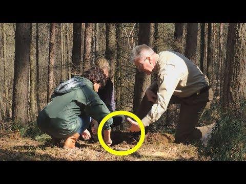 Лесник не ожидал, что ЕГО ЖИЗНЬ приподнесет ему такой подарок. Он нашел клад в лесу.