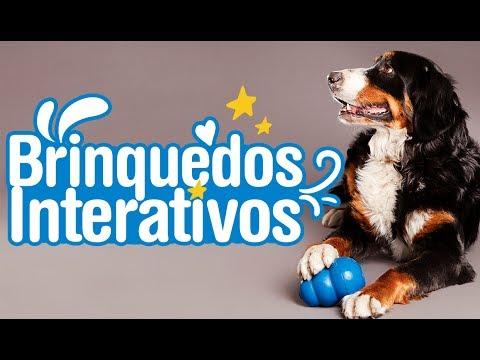 Review: Brinquedos Interativos Para Cachorros
