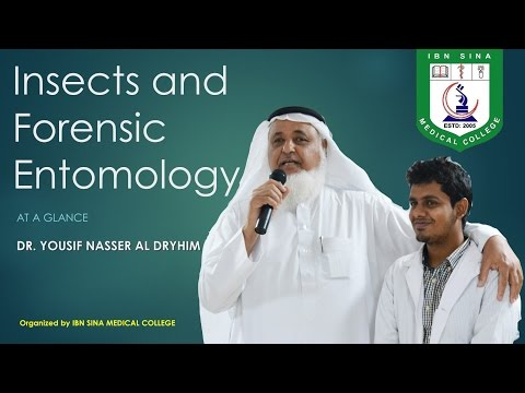 INSECT AND FORENSIC ENTOMOLOGY: AT A GLANCE By Dr. Yousif Nasser Al Dryhim