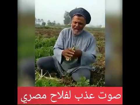 69f7255a2 فلاح مصري صوته جميل في تلاوة القرآن الكريم 👉 - YouTube