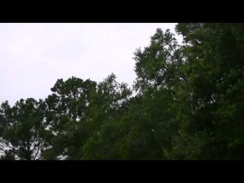 chemtrails-misty-day-after-massive-spraying-august-1,-2014