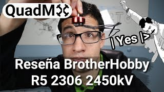 Review Brother Hobby R5 2306 2450Kv- Español