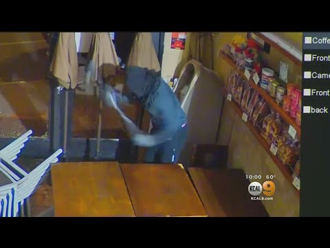 Crooks Go After Cryptocurrency Machine In Bakery Break-In