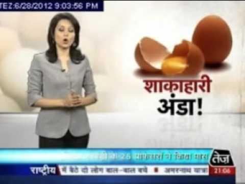 Kansal Agro Tej News