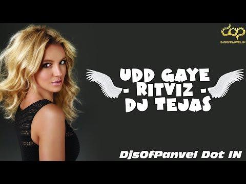 Udd Gaye - Ritviz - Dj Tejas