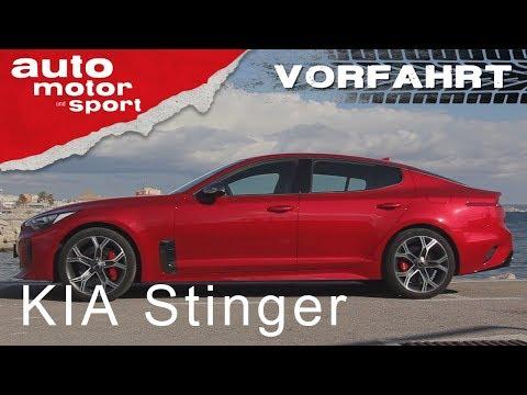 Kia Stinger: Angriff auf Audi und BMW! Vorfahrt | auto motor und sport