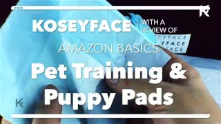 AmazonBasics Pet Training and Puppy Pads Review