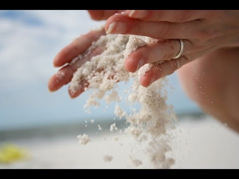 Let Go of Attachment - Alan Watts / UG Krishnamurti / Terence Mckenna
