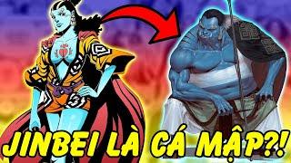 Những Sự Thật Thú Vị Về Jinbei Có Thể Bạn Chưa Biết trong One Piece
