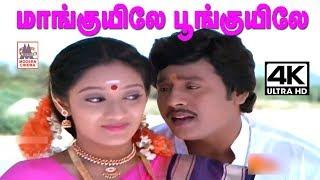 maanguyile poonguyile 4k song karagattakaran | மாங்குயிலே பூங்குயிலே  | S.P.B S Janaki