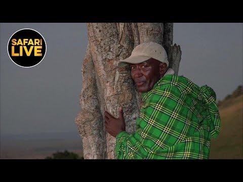 safariLIVE - Sunrise Safari - May 07, 2019