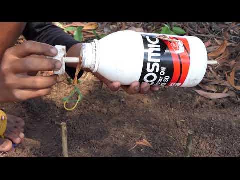 Amazing Bird Trap Technology - Building Unique Bird Trap from Plastic Bottle