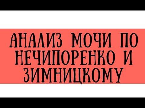 Анализ мочи по Нечипоренко и Зимницкому в норме и при патологии