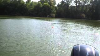 Golden Retriever Jumping Off Boat