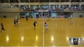 2019年IH ハンドボール 女子 準々決勝 華陵(山口) VS 白梅学園(東京)