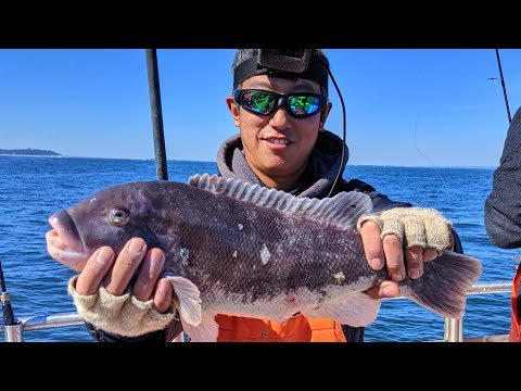 Blackfish (Tautog) Fishing - How To Feel The Bite In Rough Seas??