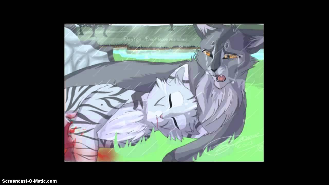 Warrior Cats Birth Scene