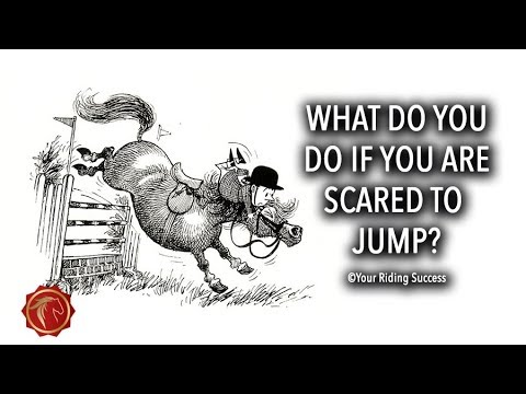 Download WHAT DO YOU DO IF YOU ARE SCARED TO JUMP? - FearLESS Friday Episode 64
