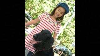 7歳の女の子が3歳のフラットコーテッド・レトリバーのトレーニングをし...