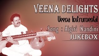 Aigiri Nandini - Veena Delights Instrumental by B.M.Chandrashekar