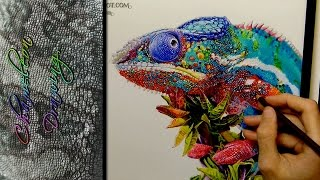 Chameleon Drawing Realistic