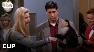 Friends: Ross Has to Say Goodbye to Marcel (Season 1 Clip) | TBS
