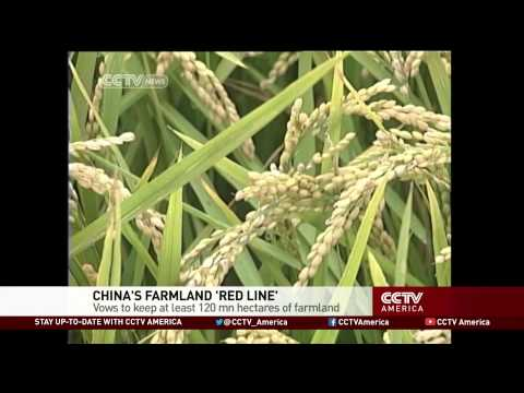 Concerns over food security in China