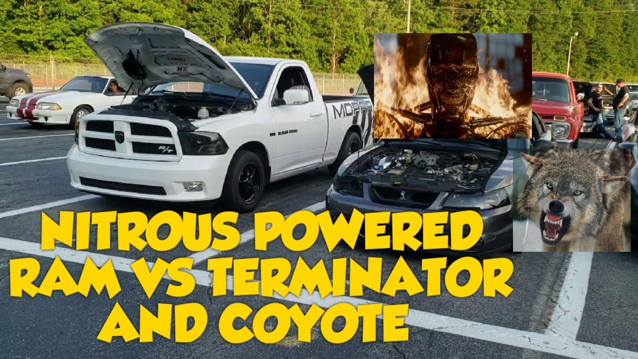 Terminator Mustang Vs Coyote