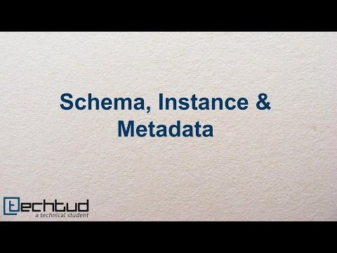 Schema, Instance & Metadata | Database Management System