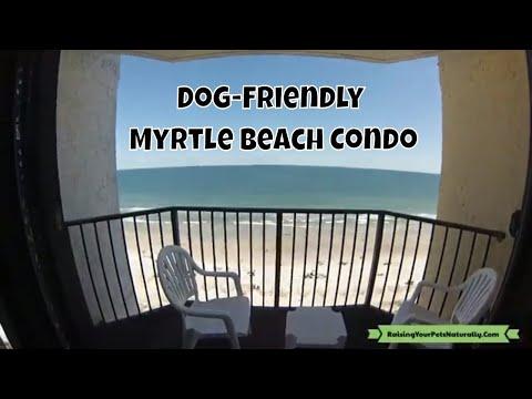 Dog-Friendly Myrtle Beach Vacations | Myrtle Beach Dog-Friendly Beach Condo Review