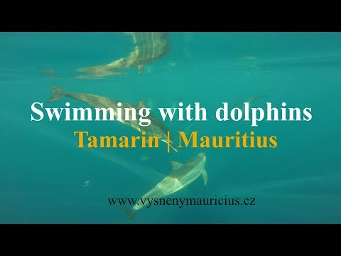 Swimming with dolphins | Tamarin | Mauritius - GoPro HERO3+ | Travel video