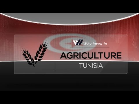 Agriculture  Tunisia - Why invest in 2015
