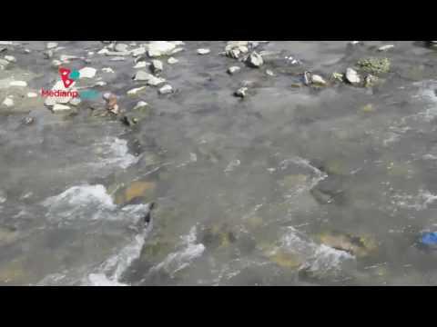 Bagmati River | Medianp.com