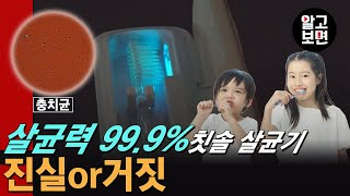 99.9% 살균으로 인기 폭발인 휴대용 칫솔 살균기의 …