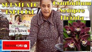 Substrato Especial para Floração de Orquídeas