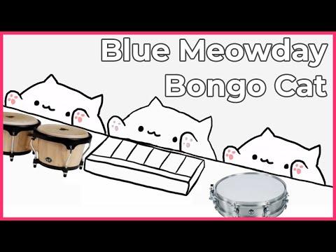 Bongo Cat - Blue Meowday