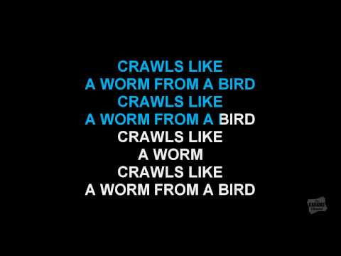 The Bird & The Worm in the style of The Used karaoke video with lyrics
