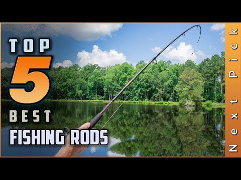 Top 5 Best Fishing Rods Review In 2020